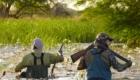chasse au gibier d eau