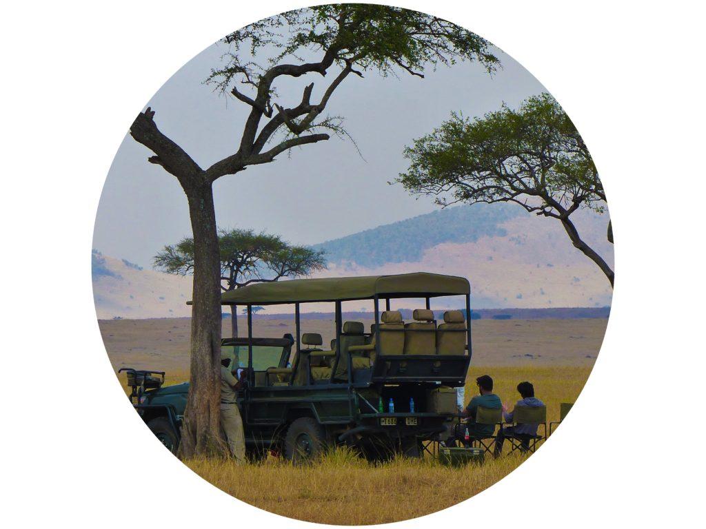 safari photos tanzanie